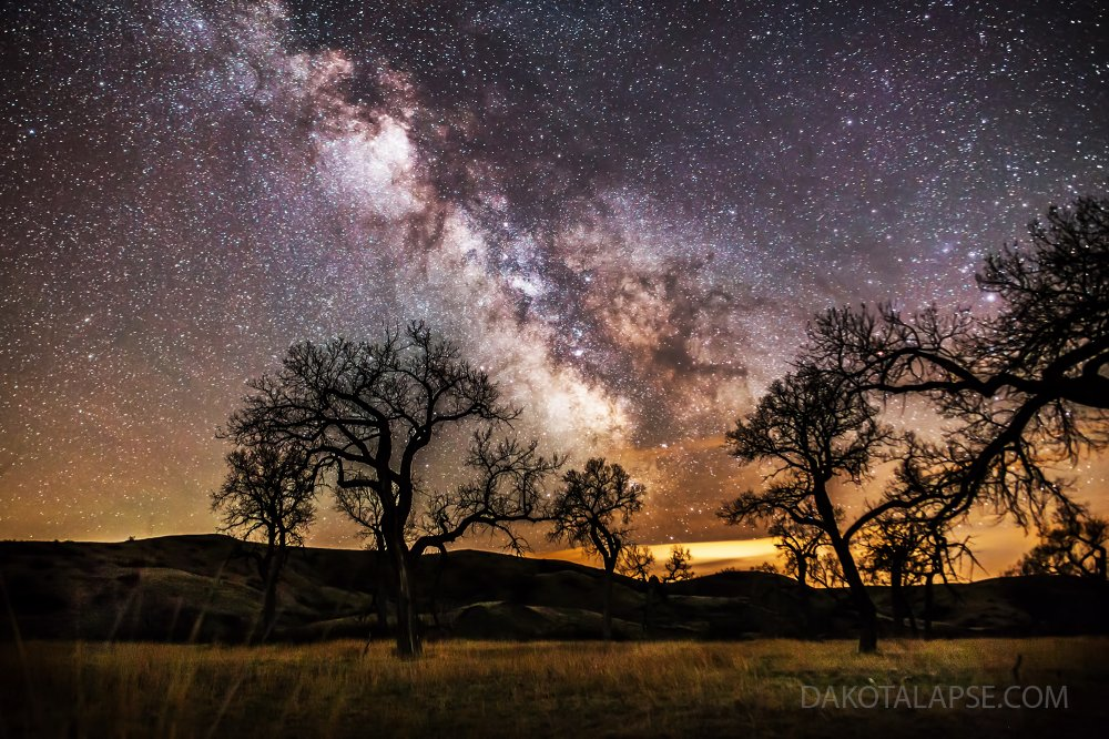 Cottonwoods and Milky Way