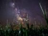 Bolide Meteor and Milky Way
