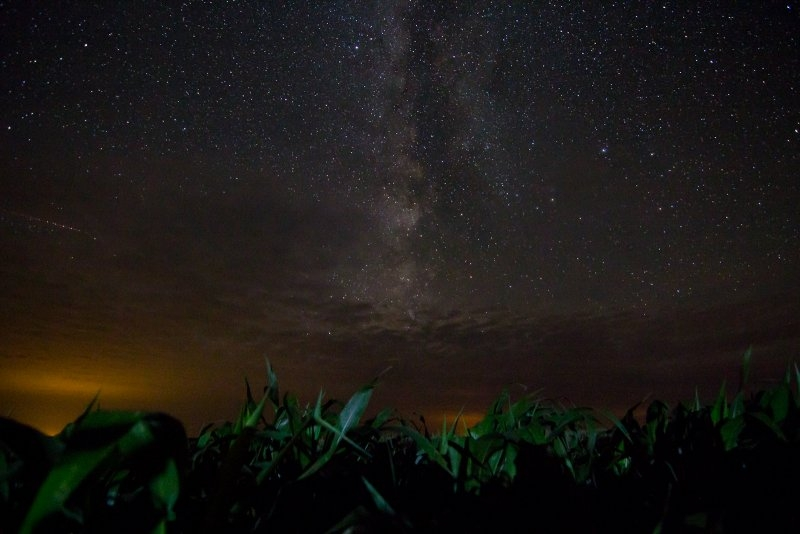 Milky Way and Corn