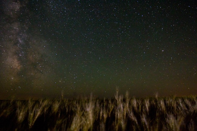 Wheat and Milky Way